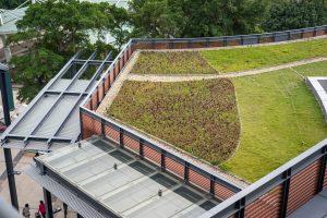 зелений дах