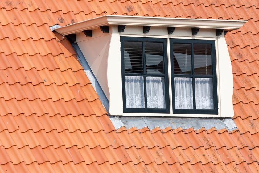 Головні типи вікон для даху та їх особливості